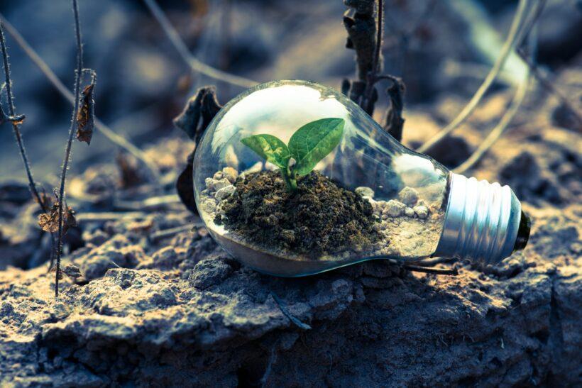 Jak zanieczyszczenie środowiska wpływa na twój organizm?